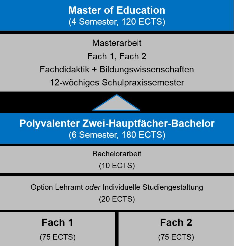 Polyvalenter Bachelor
